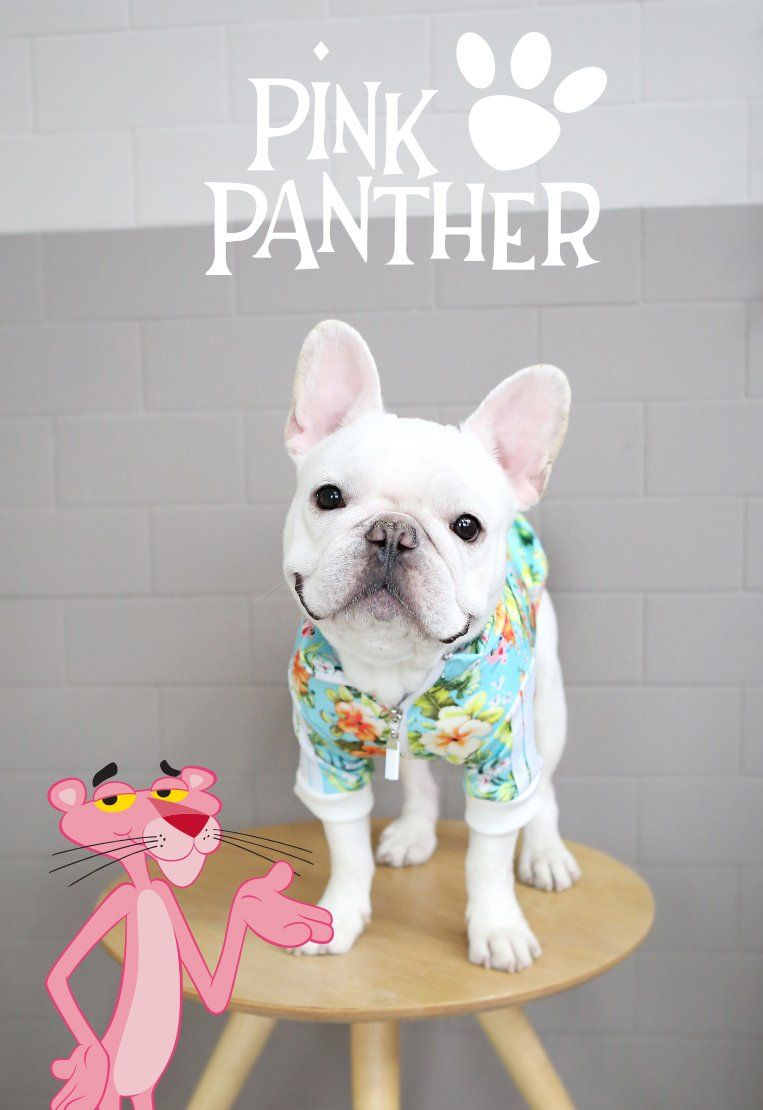 the latest 0a458 338d7 Pink Panther™ Zip Up Dog Jersey Mint in 2019 | Products ...