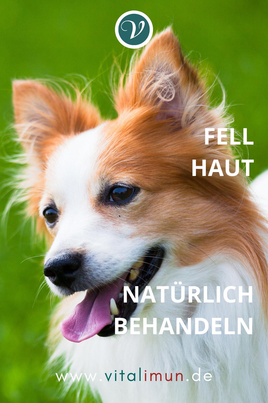 Pin Auf Hund Hautprobleme Fellprobleme Naturheilkunde