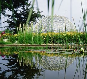Universitat Dusseldorf Botanischer Garten Botanischer Garten Garten Landschaftsbau Garten