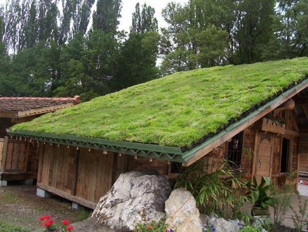 le toit v g tal en 77 photos abri jardin toit vegetal. Black Bedroom Furniture Sets. Home Design Ideas
