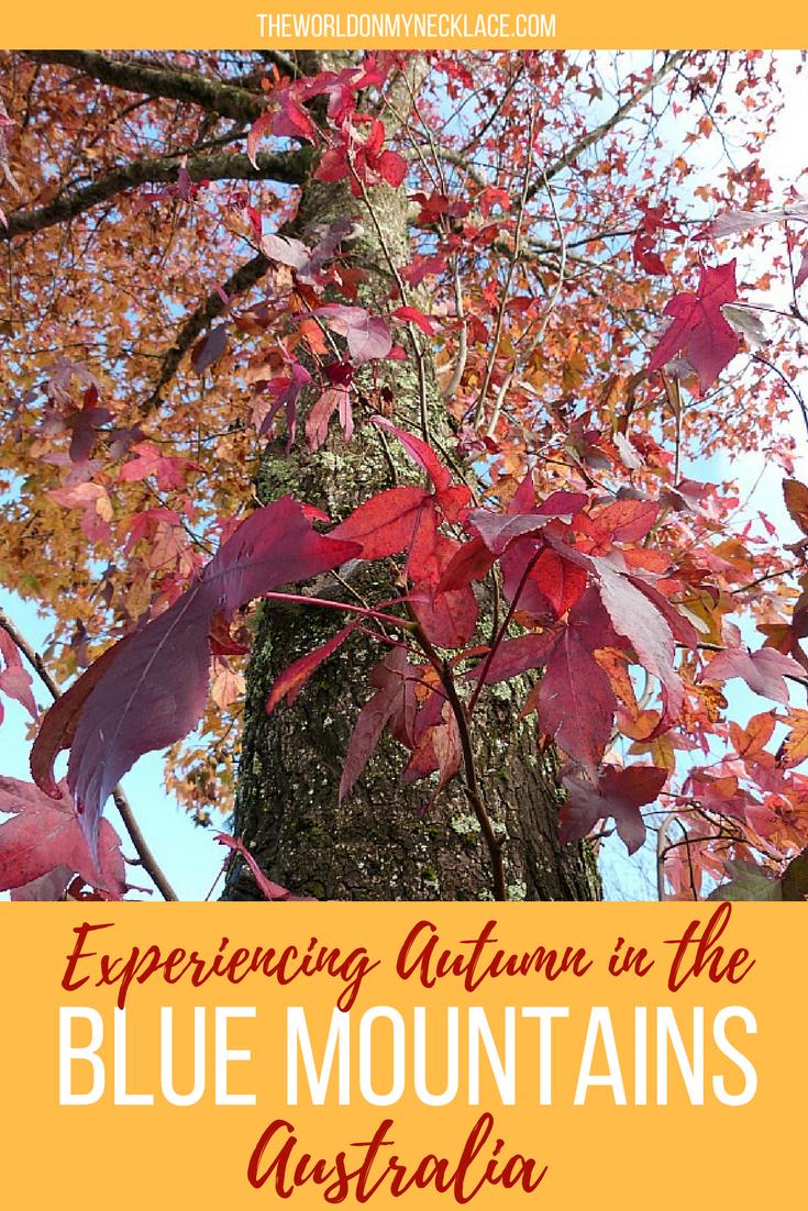 Experiencing a Blue Mountains Autumn #autumncolours