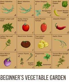 Plant-a-Grams: How to plant 16 vegetables in a 4x4' plot.