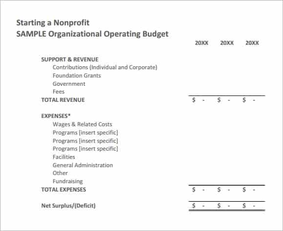 Not For Profit Budget Example Budget Template Budgeting Foundation Grants