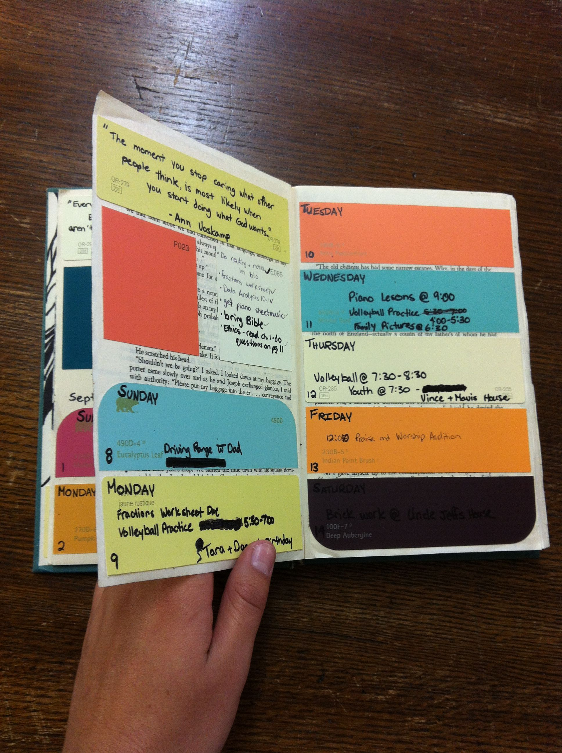 Diy Paint Sample Agenda By Myka Plett  Things To Try