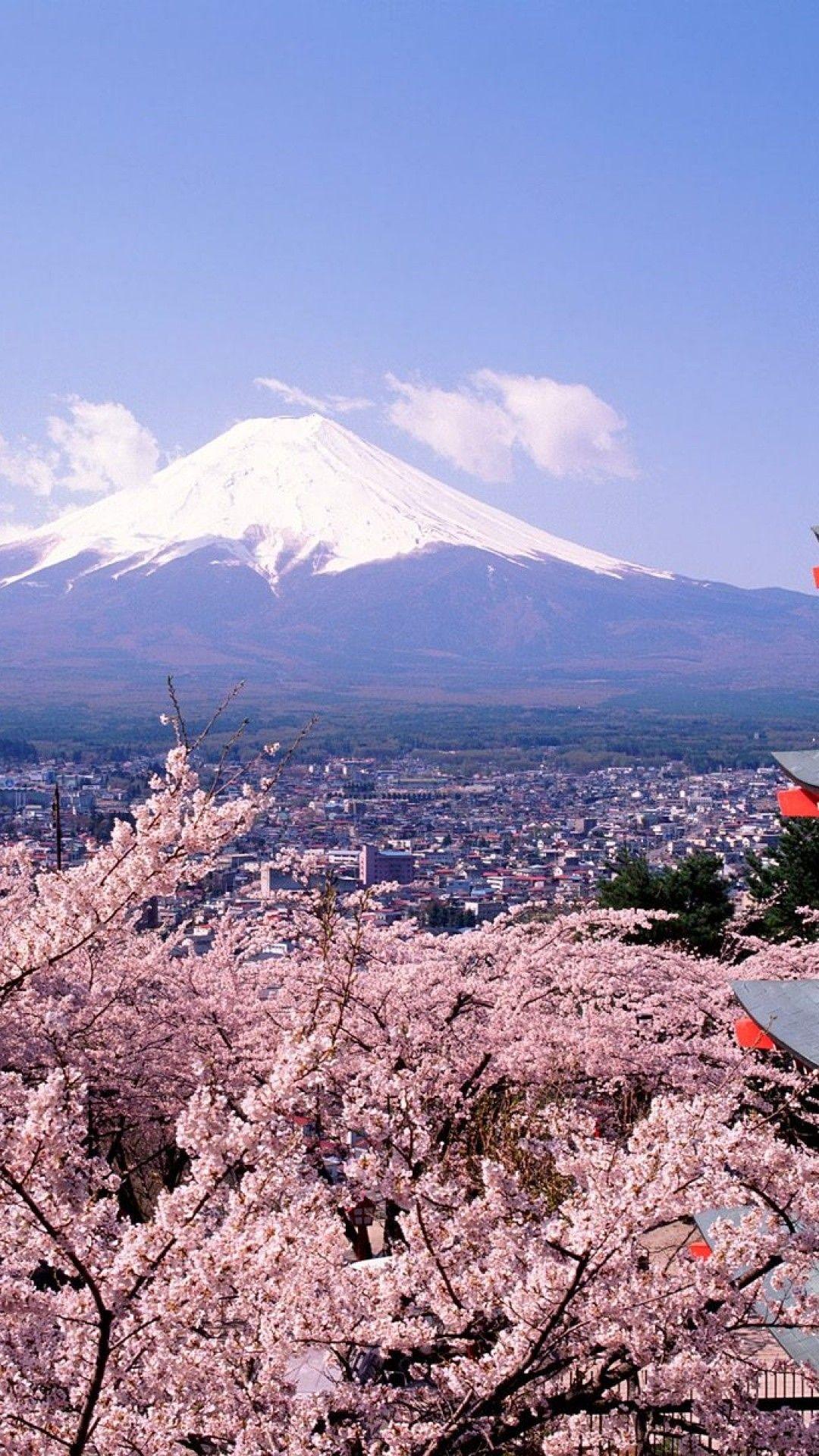 人気205位 富士山と桜 富士山 景色 風景
