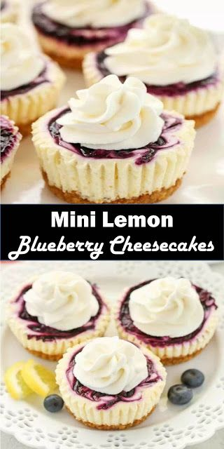 #Best #Dessert #Mini #Lemon #Blueberry #Cheesecakes - Food And Drink 16 #lemonblueberrycheesecake
