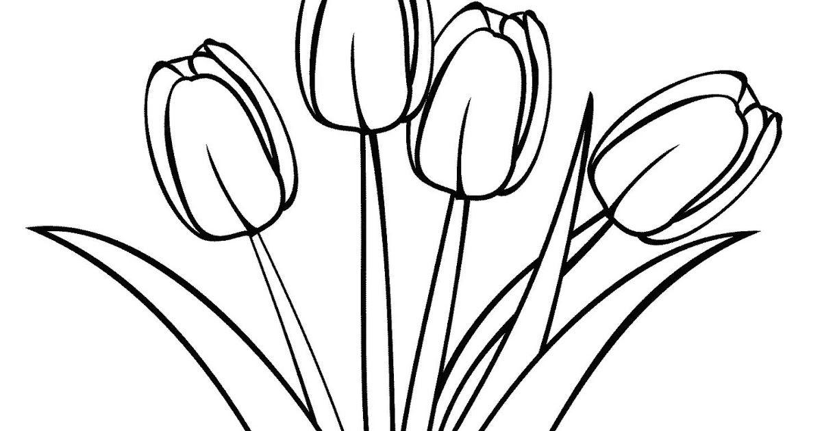 Fantastis 29 Gambar Bunga Yang Digambar Kumpulan Sketsa Gambar Bunga Tulip Harian Nusantara Pin Di Gambar Bunga Terindah Co Gambar Bunga Sketsa Bunga Bunga