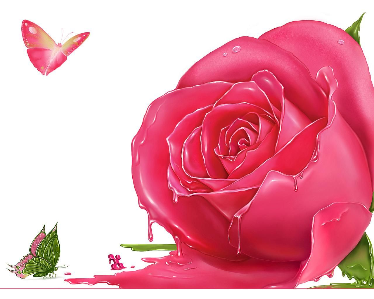 beautiful Single roses Rose | pink rose pink rose pink rose