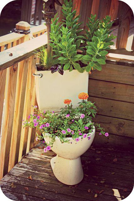 Toilet De Flower Pot At Pappy S In Blairsville Ga En 2020 Con