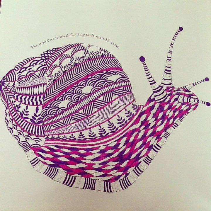 Instagramsnail Coloring BookColouringSnailAnimal KingdomBig
