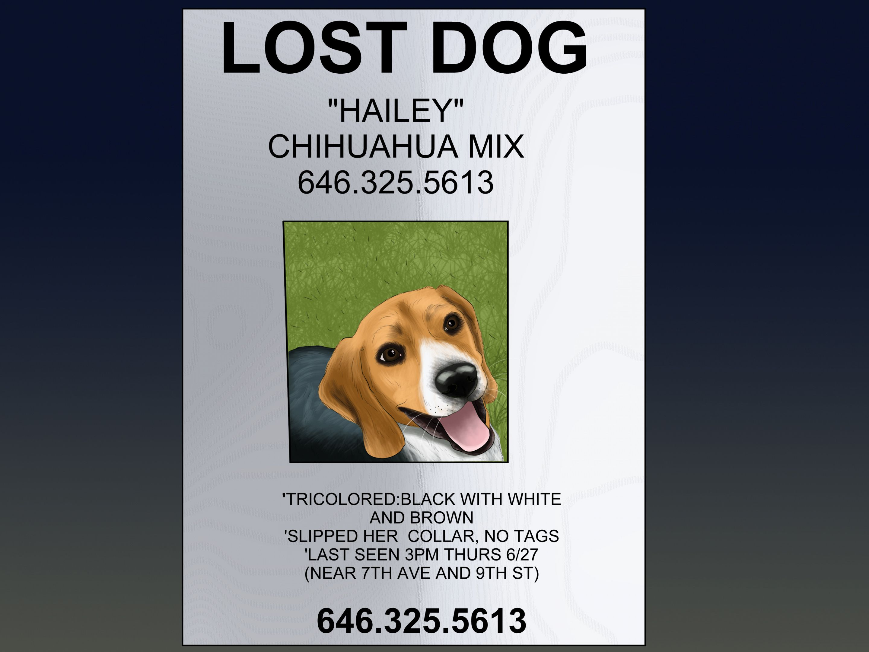 Browse Our Sample Of Found Dog Flyer Template Losing A Dog Flyer Template Poster Template Lost and found poster template