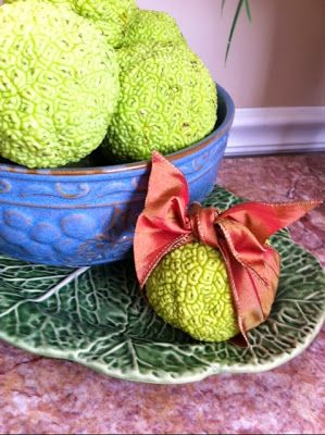 Decorate for fall with hedge apples.  Ann, thinking of you with love.