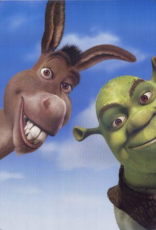 Donkey & Shrek :) | A good laugh extends your life | Shrek desenho