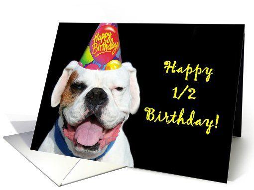 Happy 1/2 Birthday to me! Fun Stuff Pinterest White boxer dogs