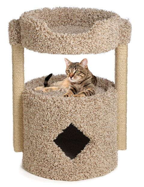 Big Cat Condo One Story With Sleeping Bed Cat Condo Unique Cat Tower Cat Towers