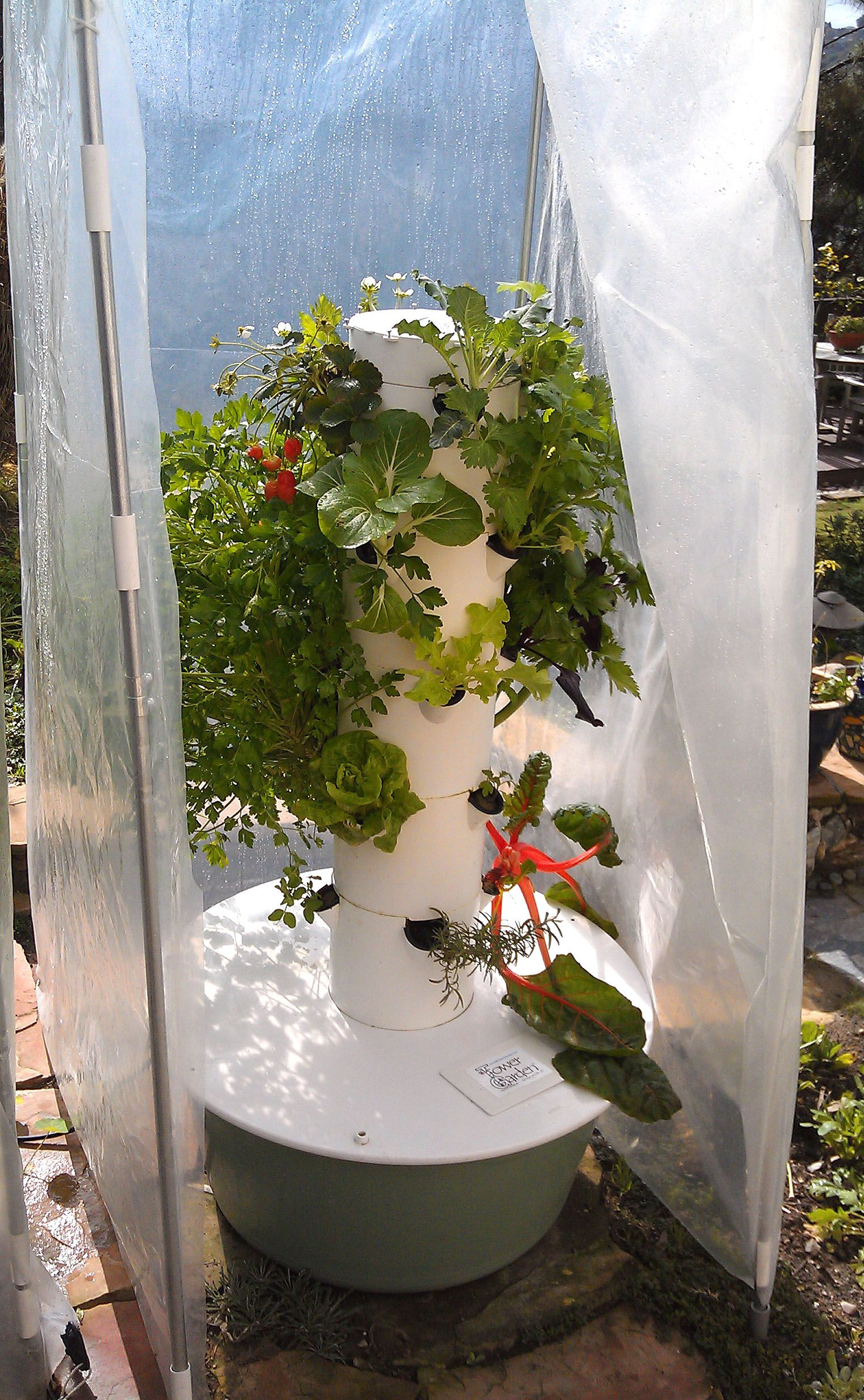 an Aeroponic Tower Gardener with the Amazing Tower