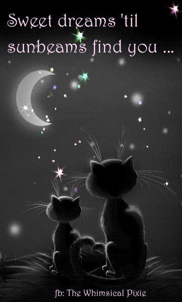 Sweet dreams until sunbeams find you