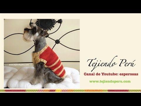 Abrigo para perrito mediano tejido en dos agujas - YouTube | Tejido ...