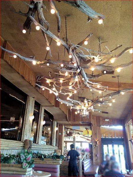 流木を天井につるし 豆電球をからめることで一気に北欧風インテリアに