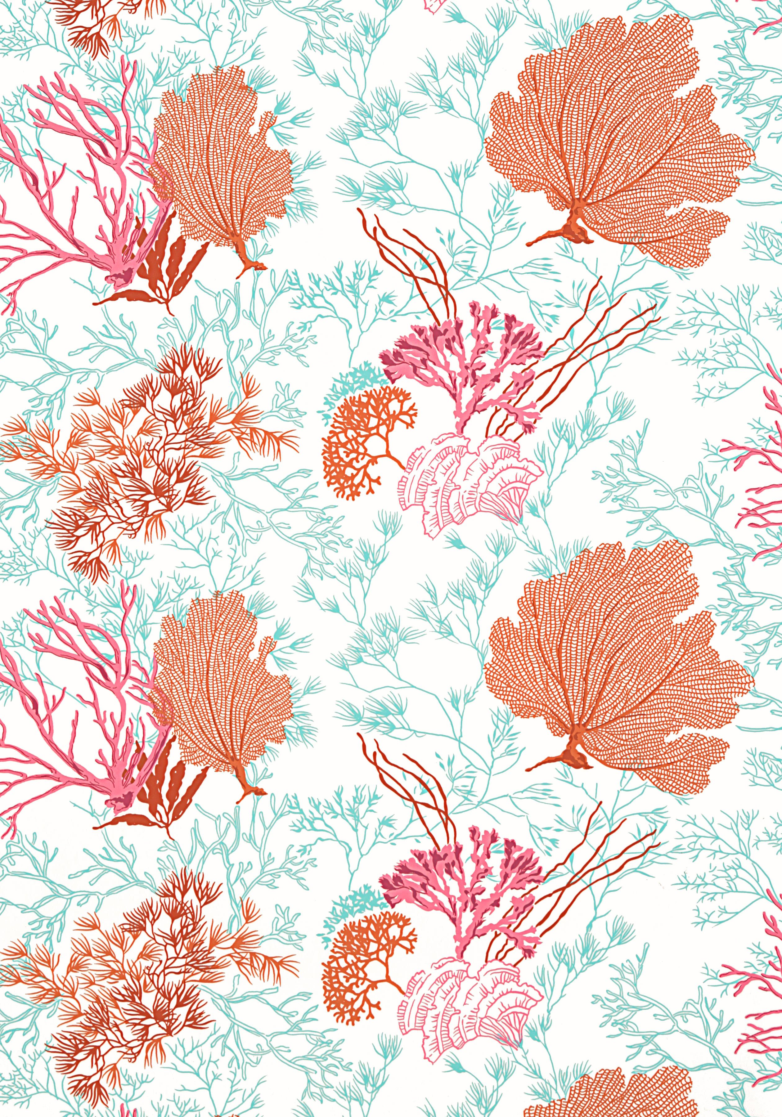 Molokini Coral T5737 Collection Biscayne From Thibaut In