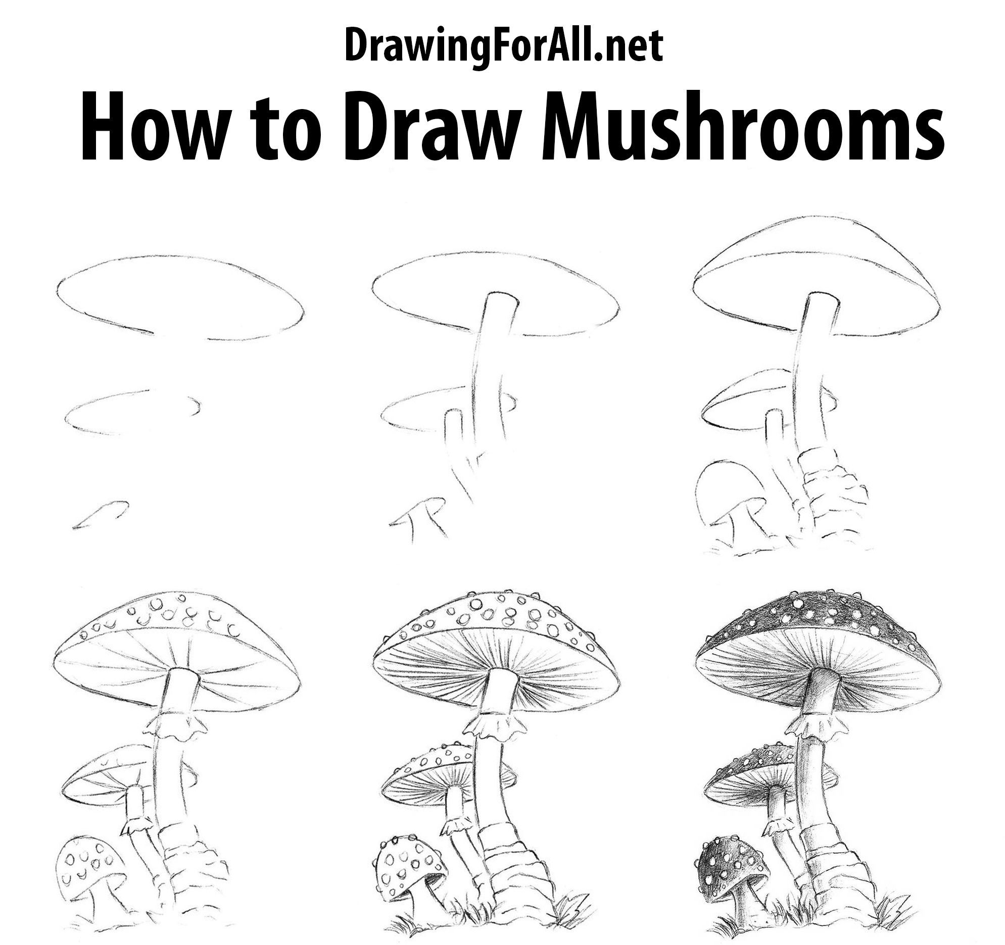 How To Draw Mushrooms Drawingtutorials In