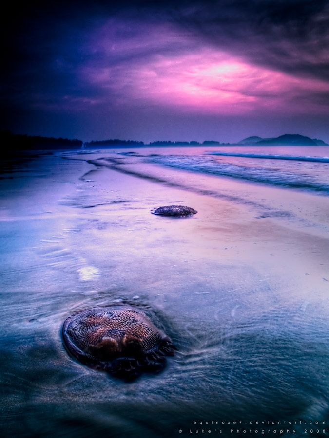 ♥ The Stranded Ones HDR by ~equinoxe7