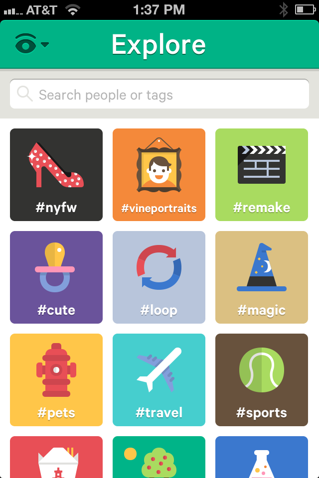 Vine Category Icons  Punchlist App    Icons