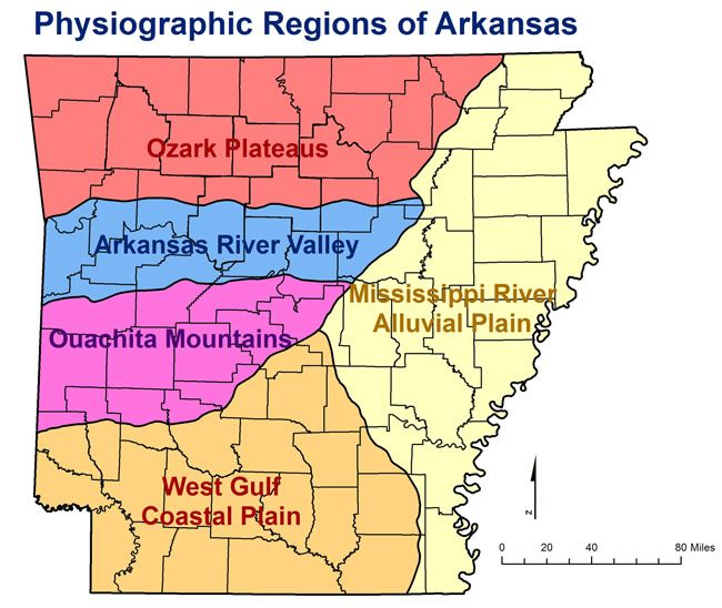 Map Of Georgia Physiographic Regions.Physiographic Regions In Arkansas General Locations Of Plateaus