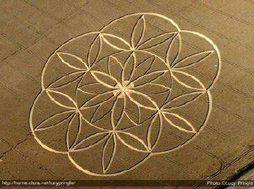 fleur de vie tatouage recherche google crop circles pinterest religion. Black Bedroom Furniture Sets. Home Design Ideas
