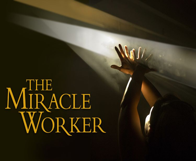 the miracle worker book report megagiper com  the miracle worker book report essay writing help online