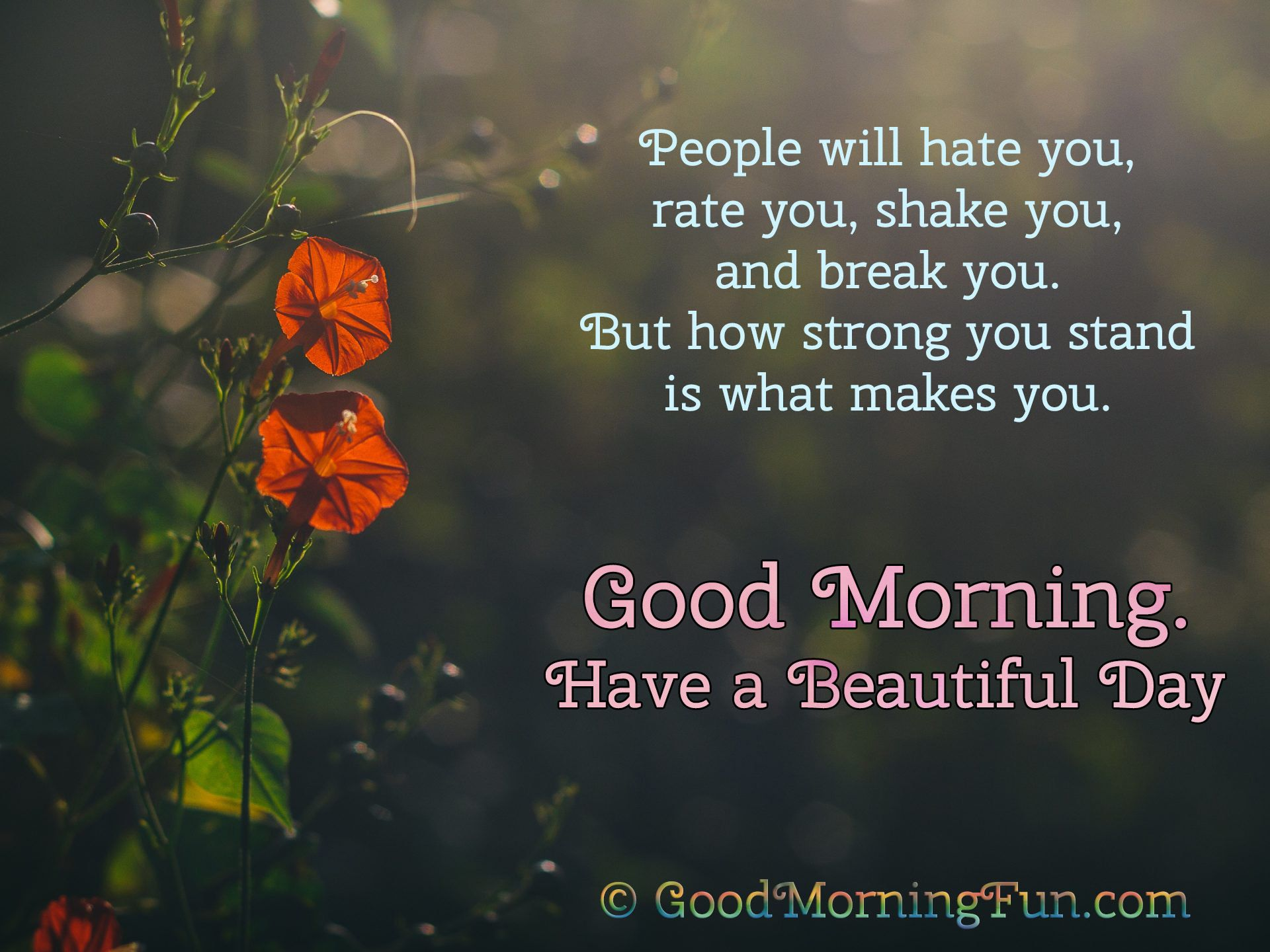 Inspirational Good Morning Quotes With Hd Images Good Morning