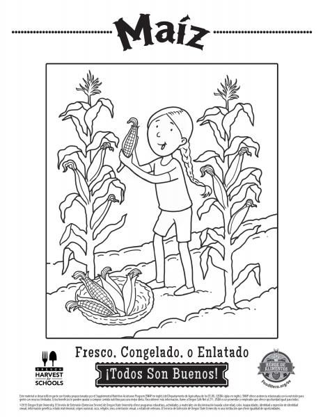 coloring pages food hero healthy vegetable coloring sheets for kids in spanish free and printable pinterest