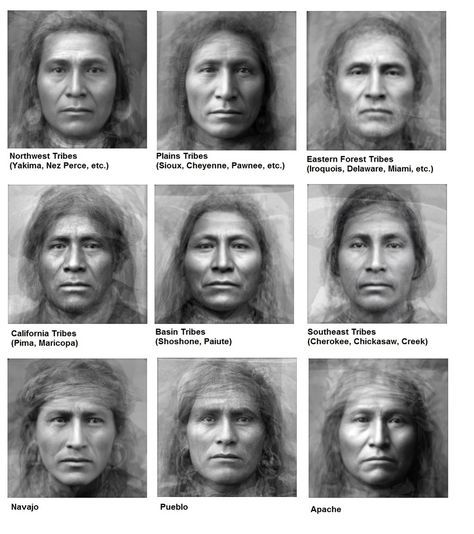 Average Faces of Native American Tribes