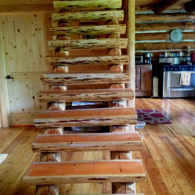 Best My Fam Made These Log Stairs From A Fallen Tree Rustic 640 x 480