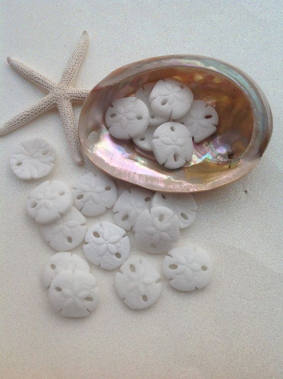 SEA Glass Sand Dollar Bead Seaglass Beads by SeasideJewelry1