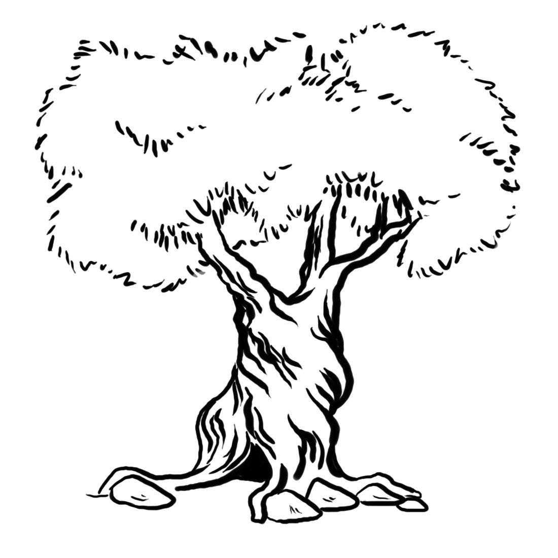 draw an olive tree