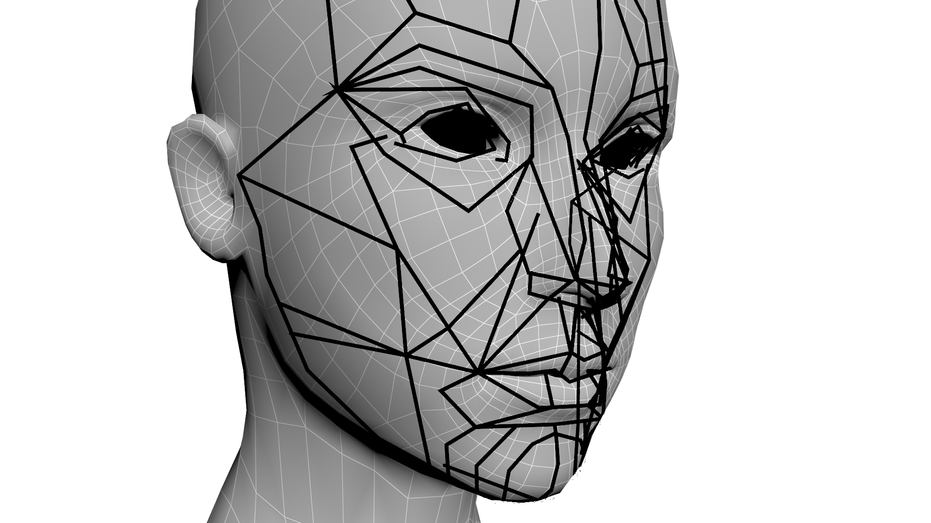 The Golden Ratio In 3d Human Face Modeling Valentin Schwind Human Face Face 3d Human