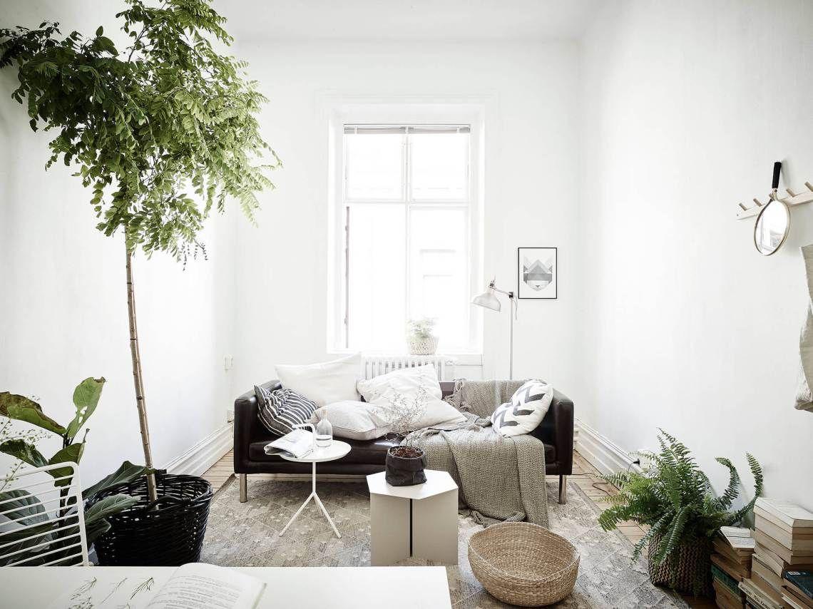 Un intérieur qui a la green attitude. Un salon, épuré, une déco ...