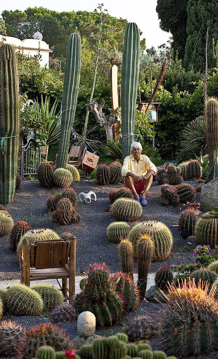 Piante Per Giardini Moderni pin su jardines