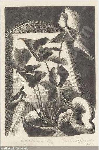 Gertrude Hermes (1901-1983 | United Kingdom) | Title: Cyclamen | Date: 1927      Category : Prints  Medium :  : Wood engraving