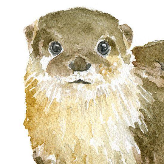 River Otter Watercolor | Nutrias, Acuarela y Dibujos en