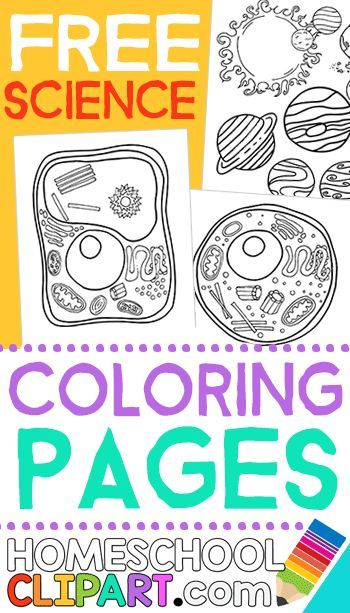 Free Science Coloring Pages, Notebooking Pages, Charts, Worksheets - new coloring pages about science