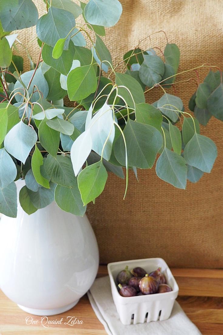Ironstone, Eucalyptus, & Fresh Figs
