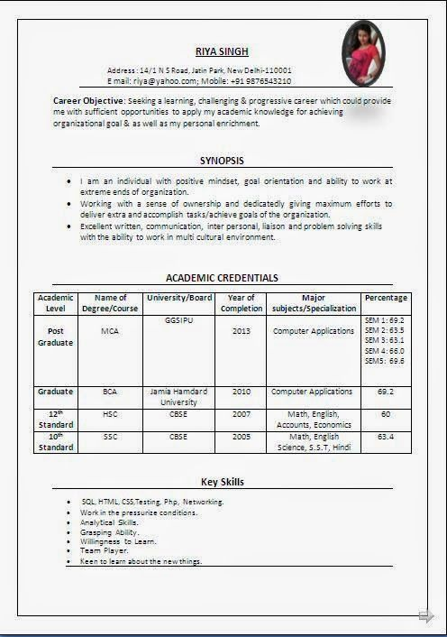 curriculum vitae student Sample Template Example ofExcellent - resume format for mca