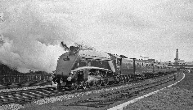 Record holder   In Transit   Train, Locomotive, Steam railway