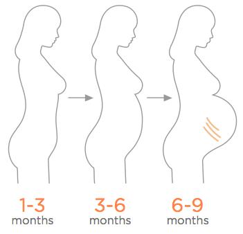 Bio Oil Facebook - A community for pregnant moms