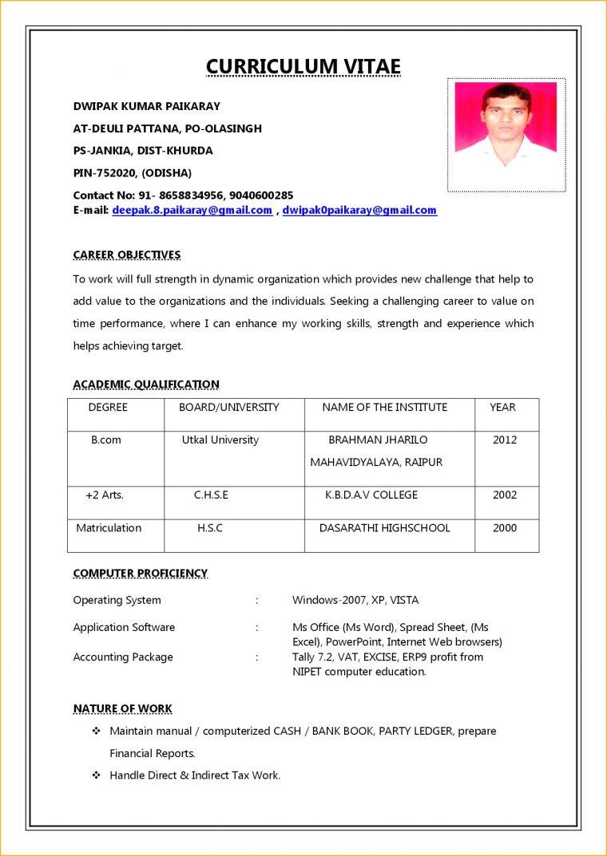 Biodata Format Job Application 1 Discover China Townsf Job