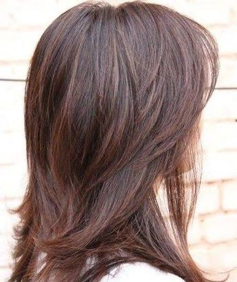 Back View Shoulder Length Layered Haircuts For Thick Hair 6
