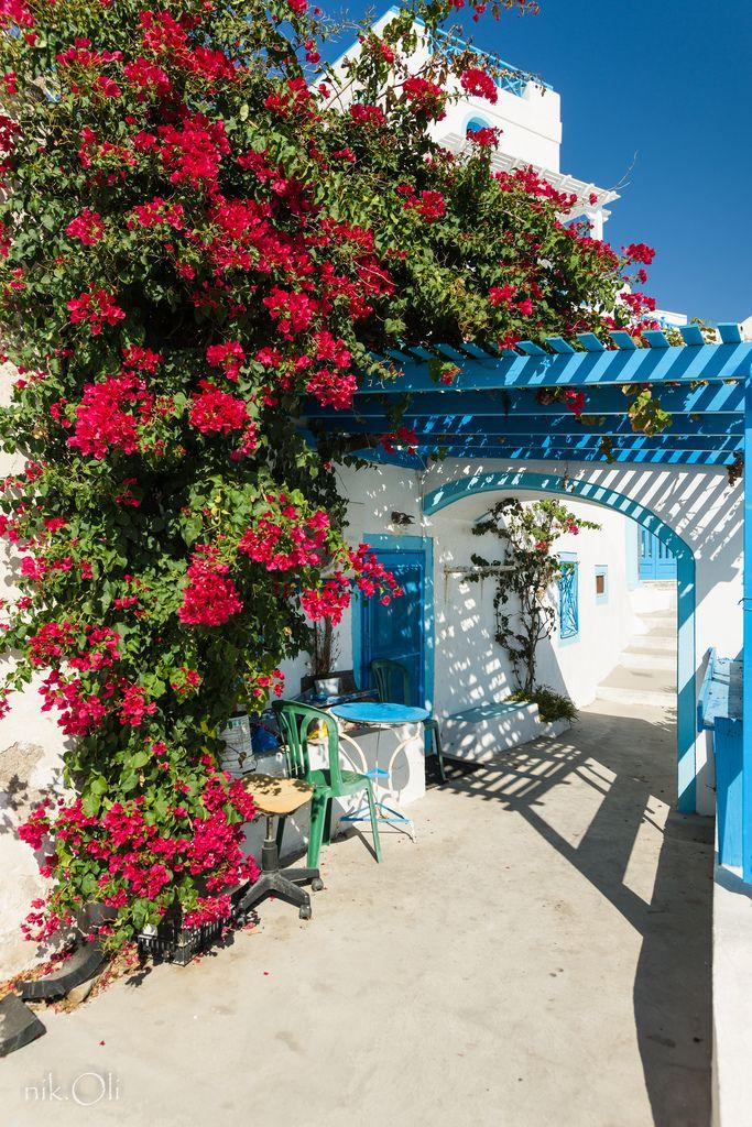 "allthingseurope: "" Santorini, Greece (by nik.oli) """