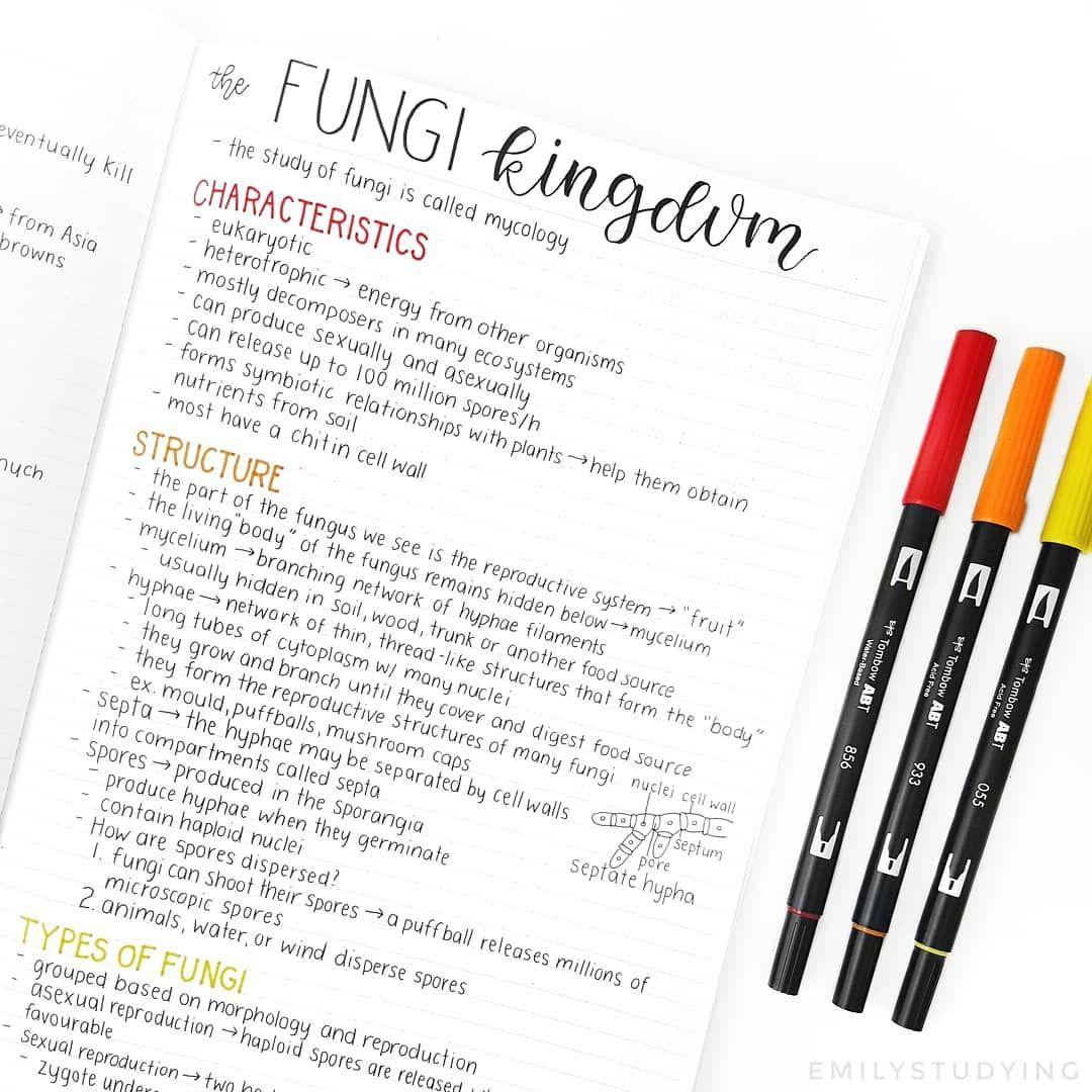 """emily's studygram on Instagram: """"Some notes in Biology"""
